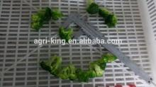 2014 high quality chinese  frozen   broccoli  cut