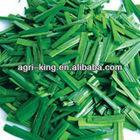 chinese new IQF & frozen leek