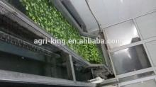 2014 Hot sale high quality chinese frozen broccoli cut