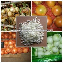 Chinese new IQF & Frozen market price for red onion