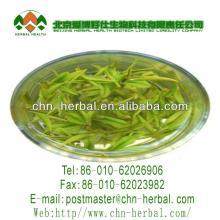 organic nature white tea