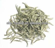early spring organic white tea silver needle Antioxidant