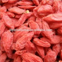 Dry Goji/dry goji berry/dry wolfberry for wholesale