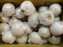 Fresh  Organic   Young  Boil Fragrant Coconut