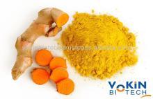 Curcumin  extract  95 %,  Curcumin   powder   95 %, Factory Price  Curcumin   95 %