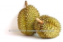 Durian Frozen