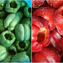 China frozen vegetables IQF red or green or yellow bell color pepper