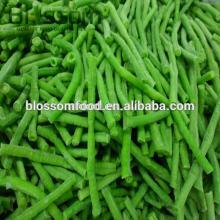 IQF fresh bulk frozen green bean cuts