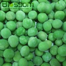 2014 new products frozen vegetables bulk frozen green bean