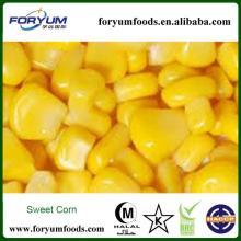 New Crop Frozen Sweet Corn