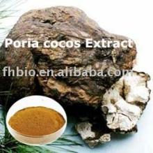 Fu (Poria Cocos) Tea Brick Powder Extract Products
