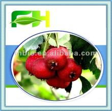 100% Natural Hawthorn Puree Concentrate