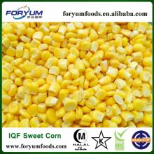 IQF Frozen Green Giant Sweet Corn