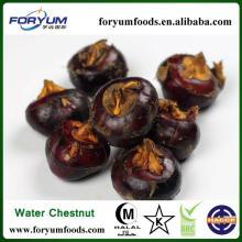 Organic   Water   Chestnut  Whole