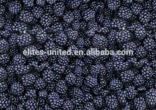 new crop  iqf  frozen  whole   blackberry  fruit
