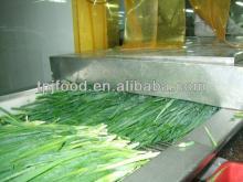 IQF Green Leek