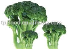 frozen broccoli florets with FDA BRC HACCP