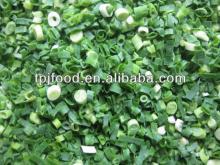 High quality IQF green onion/scallion pieces