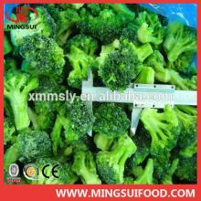 Hot sell frozen broccoli florets