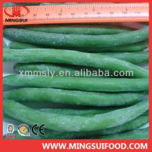 Wholesale iqf green beans whole