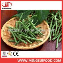 Bulk Chinese Frozen Green Bean Cut