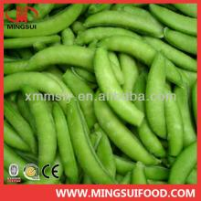New crop Chinese frozen IQF sugar snap peas