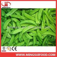 Wholesale high quality frozen snow pea pods