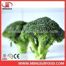 Quick frozen broccoli cut