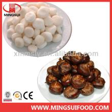 Frozen Chinese water chestnuts