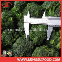 New crop frozen green broccoli