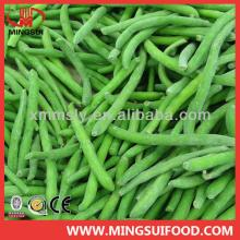 Wholesale bulk iqf frozen green beans