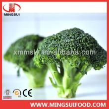 New crop Chinese  frozen   broccoli   cuts