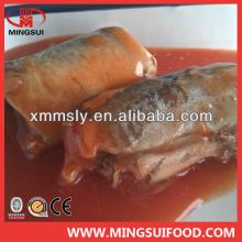 Canned  Pacific  Mackerel / Canned   Horse   Mackerel / Canned  Jack  Mackerel / Canned   Mackerel