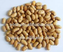 Salted roasted soy beans, low fat