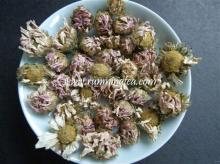 organic   chrysanthemum   tea