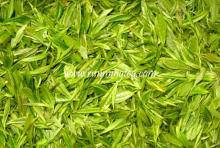 chinese   green   tea   brands