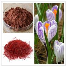 100% Natural Saffron Crocus Extract Crocin and Safranal