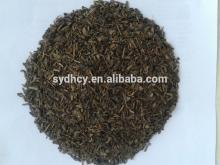 china gunpowder green tea 9575 with best price green tea gunpowder
