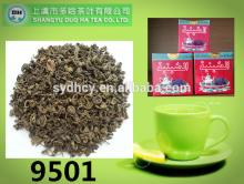 china organic gunpowder green tea 9501 with best import green tea pricing