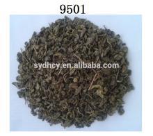2014 China New organic 9501 green tea gunpowder