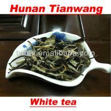 white tea natural tea