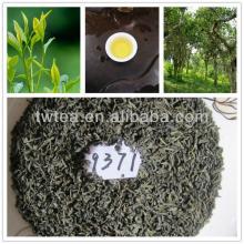Famous brand  chunmee   green   tea   9371
