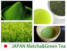 We are looking for the  Green  Tea & Matcha agency. green  tea pillow