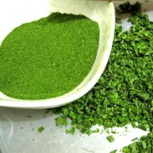 Mulberry leaf powder for Tea