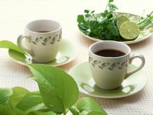 Premium Grade Moringa Mint Tea