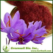 High quality Crocus sativus Extract saffron powder