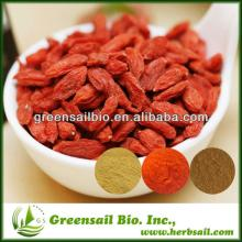 GMP & ISO9001  Certificate Dried Goji berry powder