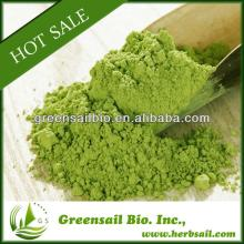 Matcha Green Tea Powder puretea 100% organic