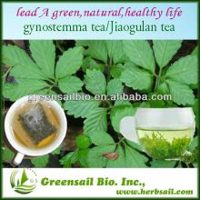 Health Herbal Tea Gynostemma Pentaphyllum Tea