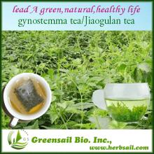 2013 Natural health herbal tea/Gynostemma pentaphyllum tea